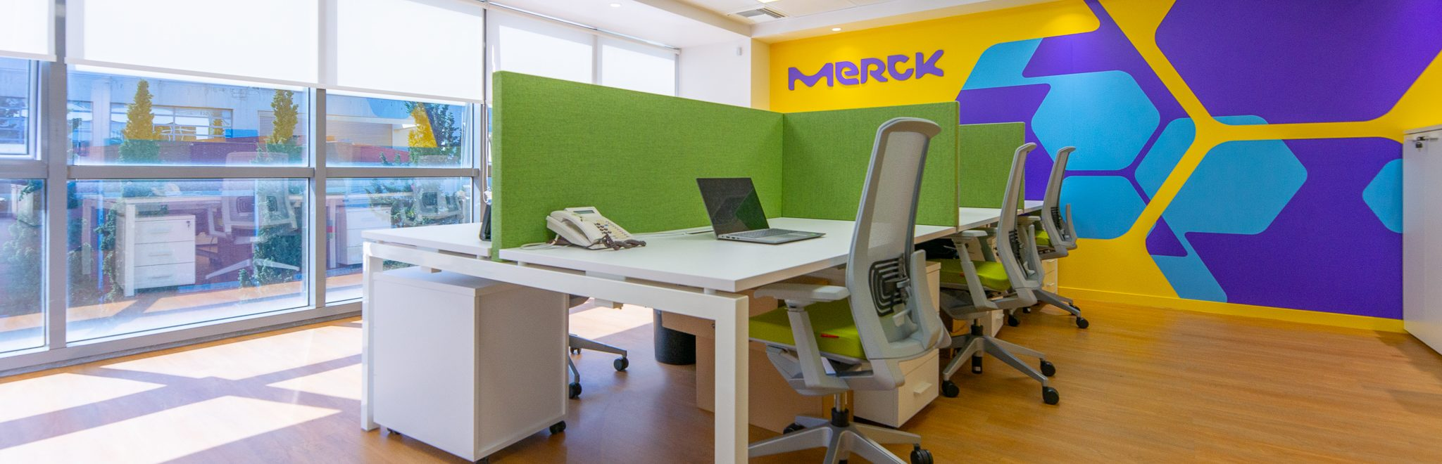 Merck Offices Workplace